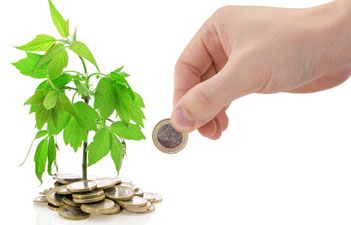 Baroda Gujarat Loans for Agro Based and Agro Processing Units